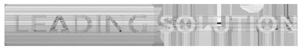 Leading Solution Logo